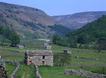 View of field barns in Swaledale